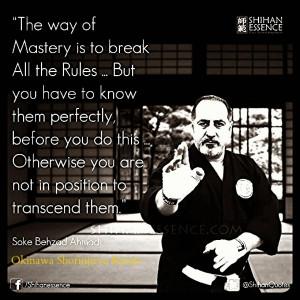 Karate Quotes Shorinjiryu karate quotes