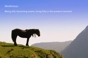Mountains and Mindfullness quote