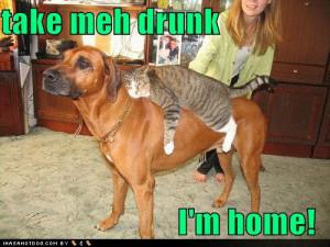 Funny pics- Girls- Boys Drunk -funny drunk