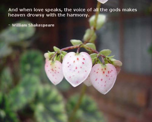 Shakespeare Romantic Quotes For Her For Him For Girlfriend And Sayings ...
