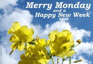 Merry Monday & Happy New Week greeting yellow flowers blue sky clouds ...