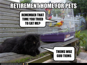Funny Retirement Quotes For Boss Funny retirement quotes.