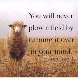 You well never plow a field by turning it over in your mind.