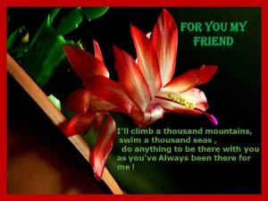 Heartfelt Quotes About Friendship