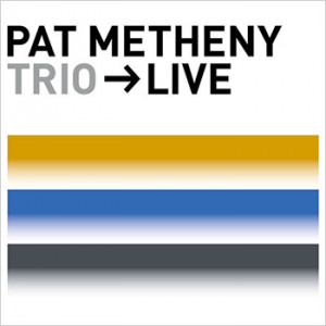 Pat Metheny Pat Metheny Home