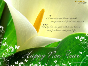 2013 New Year Wishes Wallpapers and sms...