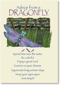 Blank Card with Quote / Saying - Advice from a DRAGONFLY | Your True ...