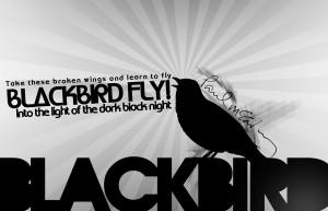 Blackbird Fly Beatles Wall...
