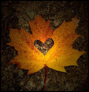 Fall Leaves Quotes Autumn leaf heart