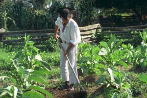 Great Hopes Plantation | Tour The Revolutionary City | Colonial ...