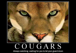 Funny Cougar Picture