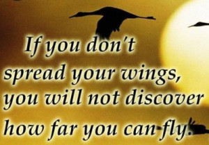 If you don't spread your wings, you will not discover how far you ...