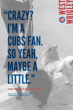 cubs spring training facility on behance more cubs fans chicago cubs ...