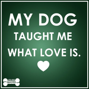 My dog taught me what love is