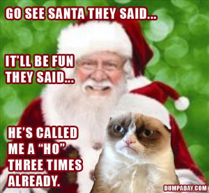 What's your favorite Grumpy Cat Christmas meme? Share below!