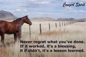 Amazing horse quotes.