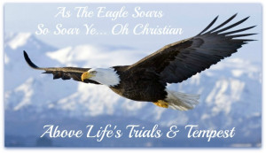 On Eagles Wings Was Penned & Compiled by Peter O'Neill