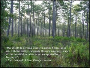 Leopold, A Sand County AlmanacOutdoor Inspiration, Aldo Leopold Quotes ...