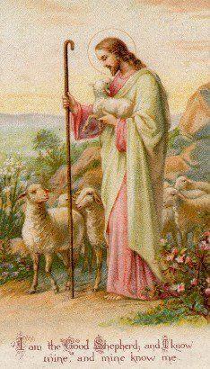 ... inspiration jesus christ holy cards christ the good shepherd bible