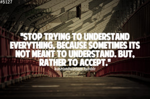 Stop trying to understand everything