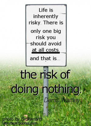 Doing Nothing Quotes - Life is risky Quotes