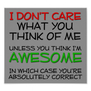 Don't Care, I'm Awesome! Funny Poster Sign
