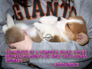 Animal Quotes Graphics, Pictures