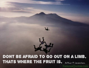 Don't be afraid to go out on a limb. Thats where the fruit is ...