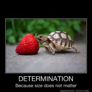 DETERMINATION...