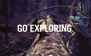 adventure, branch, explore, forest, quote, text, trees, woods, words