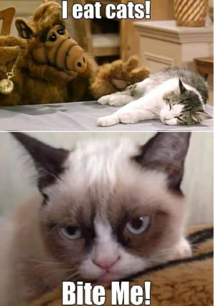 Alf Eats Cats!   Alf vs. Tard   @imgur.com