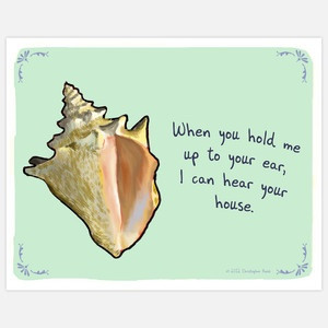 Seashell sense.: Funny Prints, Christopher Rozzi, Funny Things, Quote ...