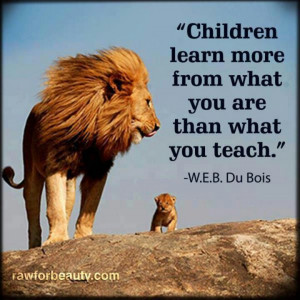 Lion Quotes And Sayings Lions
