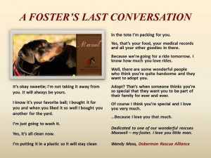 ... waiting, needing a foster home. Foster parents save lives, try it