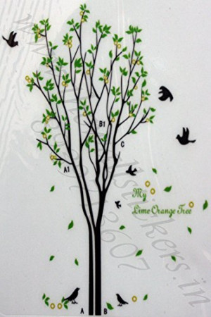 Free Will My Lime Orange Tree Quote Big Tree with Birds and Leaves ...
