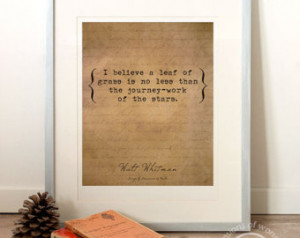 ... quote, typography, instant art, Walt Whitman, leaves of grass, stars