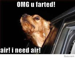 Need Air! Funny Animal Quote