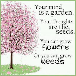 Grow, garden, grow