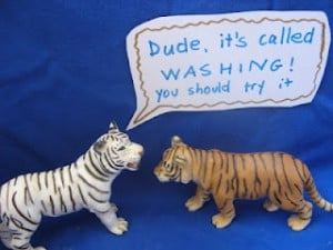The Tiger of personal hygiene - an Amusing Tableau