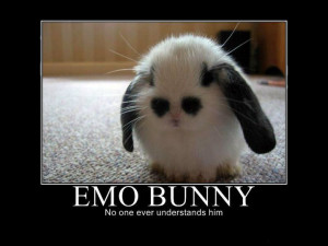 Demotivational Posters - Emo Animals (2)