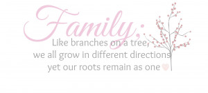 Facebook Cover Photos Quotes About Family Family quote, cost of a ...