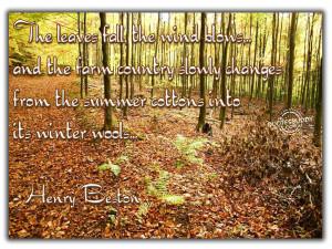 Autumn quotes, life quotes, halloween quotes