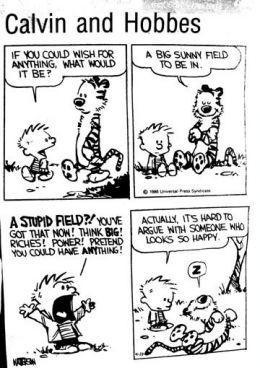 Calvin & Hobbes - Friends Forever