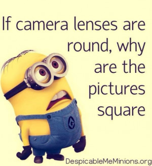 Funny minions Quotations and Quotes