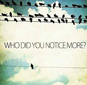 Dare To Be Different Quotes Bird quote - dare to be different. via ...