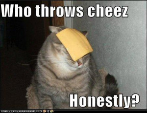 ... with this one :) If I could live in a block of cheese, I WOULD