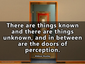 If the doors of perception were cleansed every thing would appear to ...