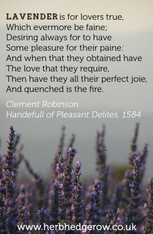 Lavender is for lovers true, Which evermore be faine; Desiring always ...