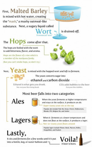 How to make beer, the basics of it!