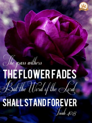 The grass withers, the flowers fade but the word of the Lord shall ...